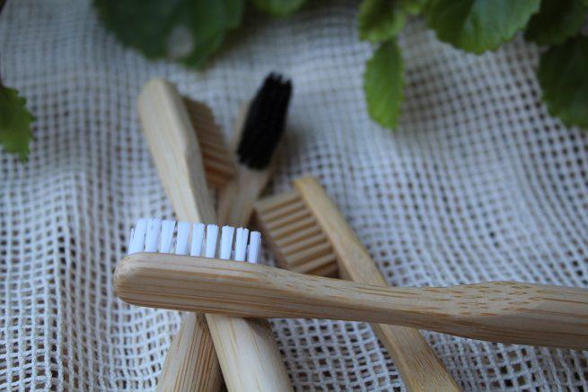 cepillos de dientes reutilizables