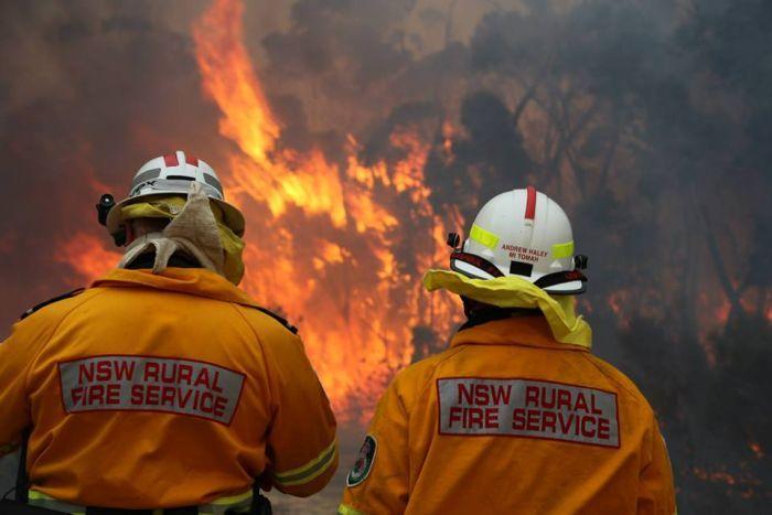 ayudamos en el incendio de australia