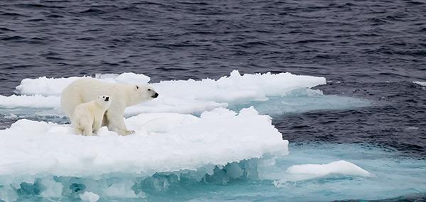 que es el cambio climatico